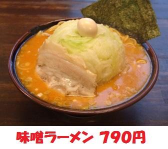 miso790.jpg